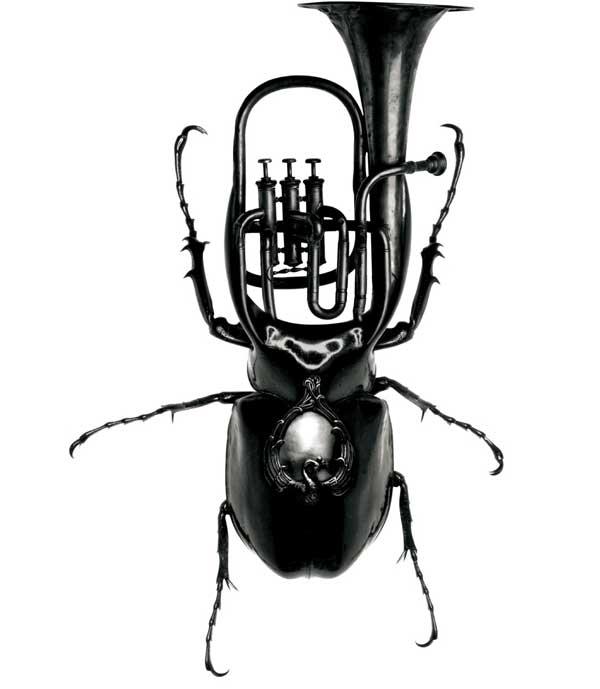 Kriblende fryd