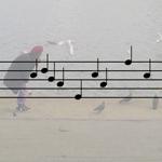 Øjeblikkets melodi