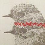 Ronald Ceuppens røde tråd
